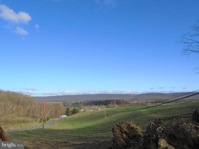 Lot #4 Luckenbill Road, SCHUYLKILL HAVEN, PA 17972 (#PASK129734) :: Ramus Realty Group