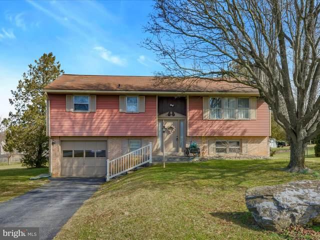 15 Overlook Drive, EPHRATA, PA 17522 (#PALA158852) :: The Joy Daniels Real Estate Group