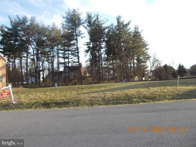 10811 Hershey Drive, WILLIAMSPORT, MD 21795 (#MDWA170664) :: The Miller Team