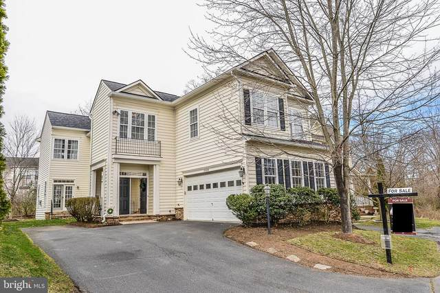 21882 Windover Drive, BROADLANDS, VA 20148 (#VALO403576) :: The Greg Wells Team