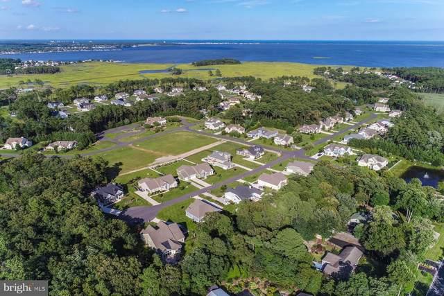 31750 Marsh Island Avenue #14, LEWES, DE 19958 (#DESU156092) :: Ramus Realty Group