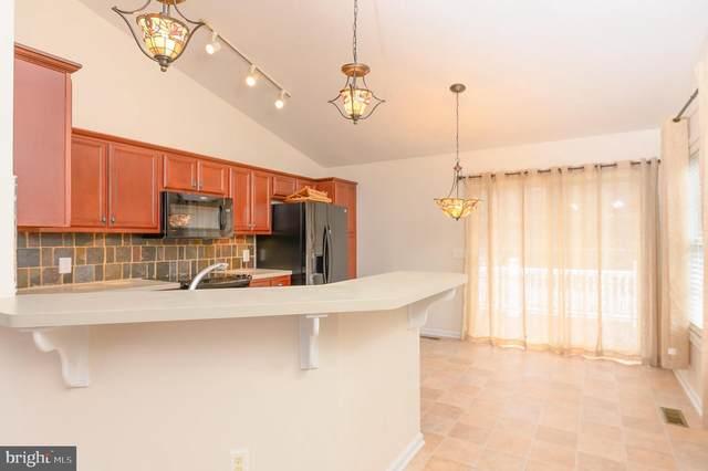 161 Sweetgum Street, ELKTON, VA 22827 (#VARO101072) :: SURE Sales Group