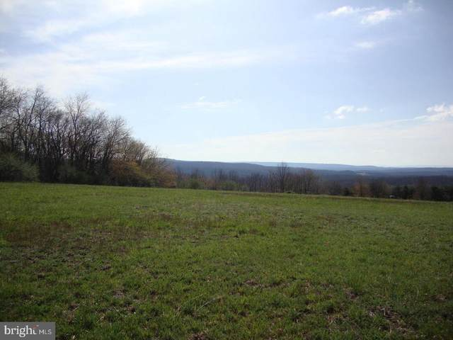 Lot 39G North Frederick Pike, CROSS JUNCTION, VA 22625 (#VAFV155730) :: Larson Fine Properties