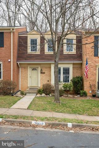 7902 Birchtree Court, SPRINGFIELD, VA 22152 (#VAFX1111556) :: The Redux Group