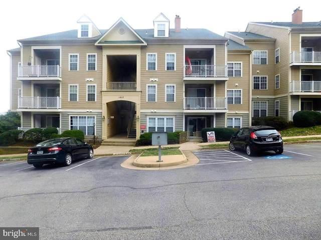 1037 Gardenview Loop #303, WOODBRIDGE, VA 22191 (#VAPW487740) :: The Bob & Ronna Group