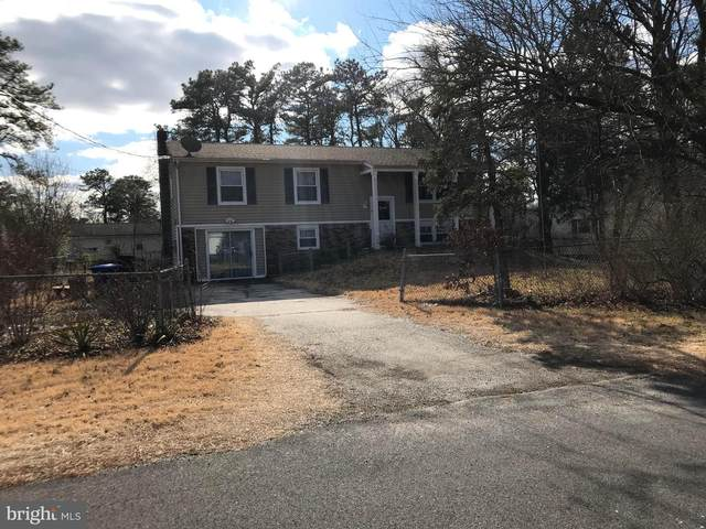 14 Chippewa Trail, BROWNS MILLS, NJ 08015 (#NJBL366932) :: John Smith Real Estate Group