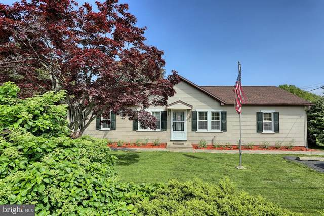 1365 Route 209, MILLERSBURG, PA 17061 (#PADA119254) :: The Dailey Group