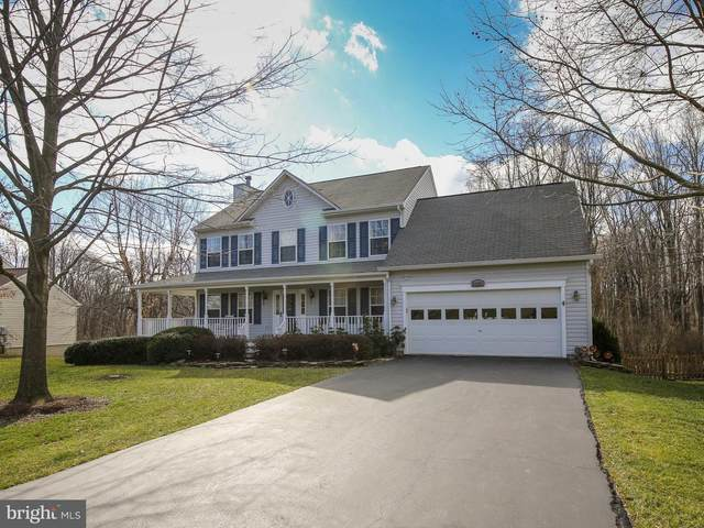 35483 Sourwood Place, ROUND HILL, VA 20141 (#VALO403704) :: Peter Knapp Realty Group