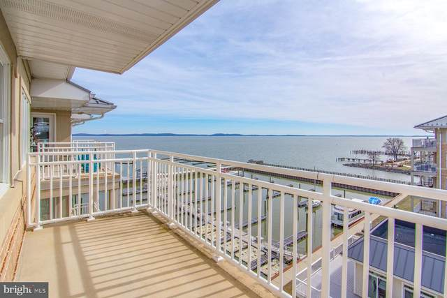 555 Concord Street 2D, HAVRE DE GRACE, MD 21078 (#MDHR243528) :: The Putnam Group