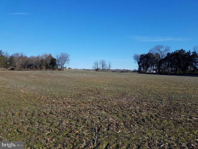 Old Marsh Road, BEALETON, VA 22712 (#VAFQ164176) :: Jacobs & Co. Real Estate