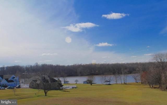 6905 Lake Pointe Drive, MINERAL, VA 23117 (#VASP219608) :: Gail Nyman Group