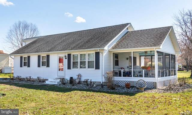 102 E Pier Street, OXFORD, MD 21654 (#MDTA137422) :: Bruce & Tanya and Associates