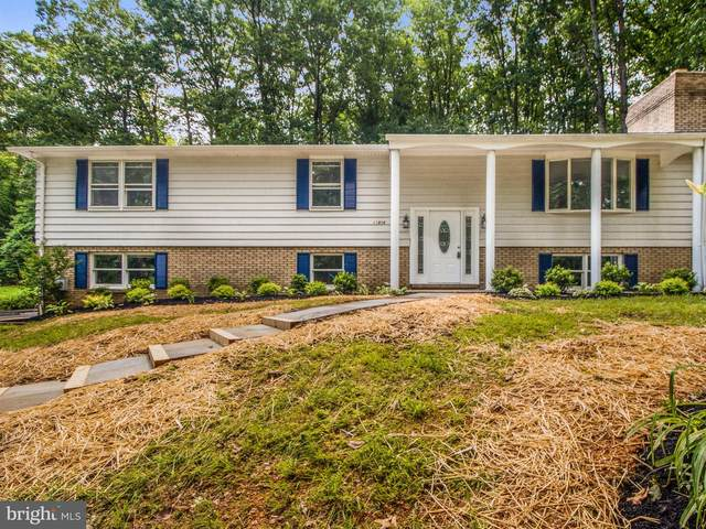 11808 Pine Tree Court, MONROVIA, MD 21770 (#MDFR260008) :: Charis Realty Group