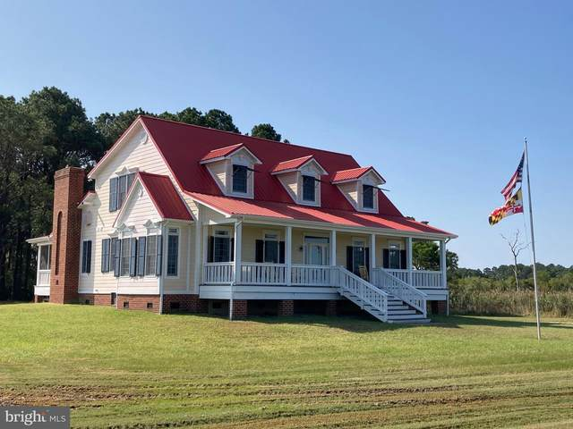 2435 Elliott Island Road, VIENNA, MD 21869 (#MDDO125010) :: Atlantic Shores Sotheby's International Realty