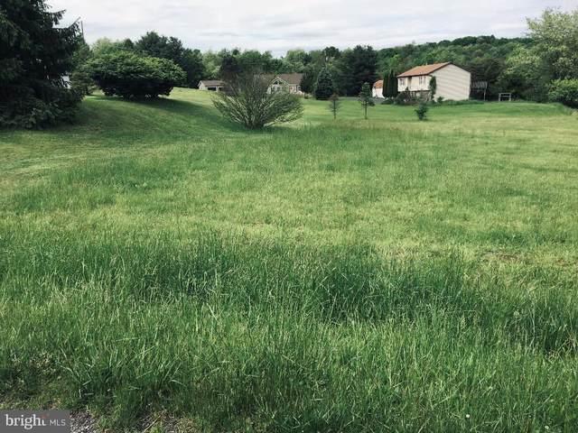 2204 Wynonah Drive, AUBURN, PA 17922 (#PASK129776) :: The Joy Daniels Real Estate Group