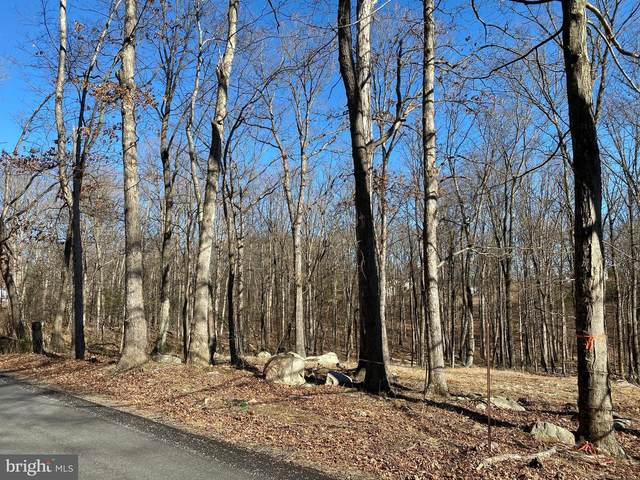 Woodmont Road, GREAT CACAPON, WV 25422 (#WVMO116506) :: Arlington Realty, Inc.