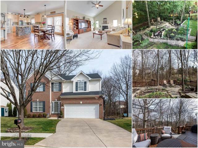 21312 Marsh Creek Drive, BROADLANDS, VA 20148 (#VALO403774) :: The Greg Wells Team
