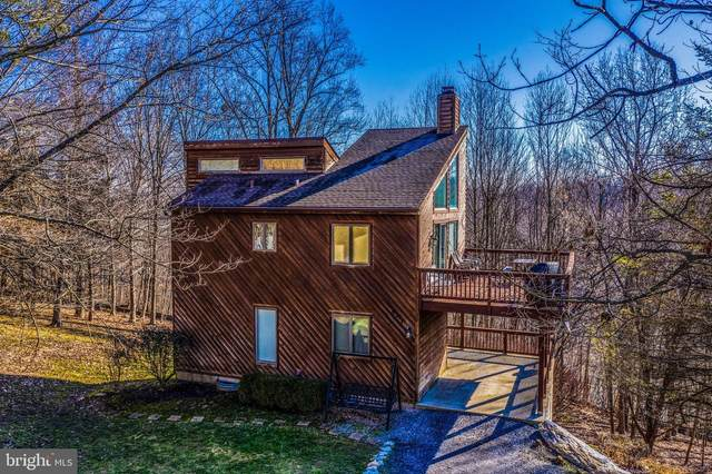 6797 Balmoral Ridge, NEW MARKET, MD 21774 (#MDFR260076) :: Viva the Life Properties