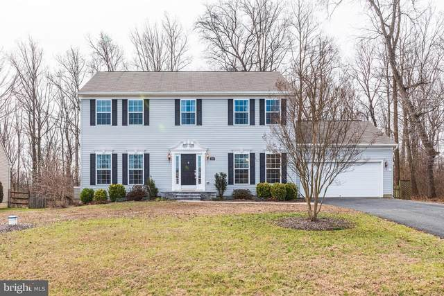232 Flintstone Drive, NORTH EAST, MD 21901 (#MDCC168090) :: The Bob & Ronna Group