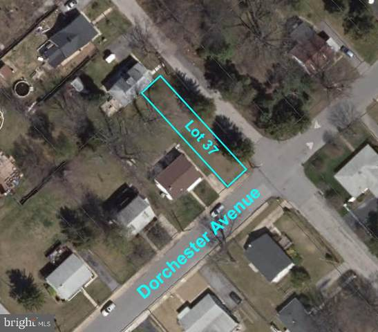 Dorchester Avenue, GWYNN OAK, MD 21207 (#MDBC485744) :: Coleman & Associates