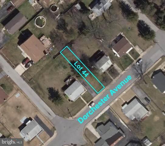 Dorchester Avenue, GWYNN OAK, MD 21207 (#MDBC485750) :: Coleman & Associates