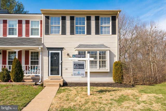 6400 Selby Court, CENTREVILLE, VA 20121 (#VAFX1112030) :: Pearson Smith Realty