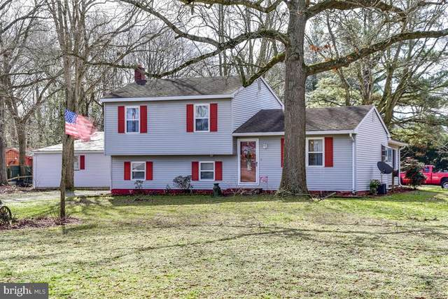 32029 Morris Leonard Road, PARSONSBURG, MD 21849 (#MDWC107078) :: Bob Lucido Team of Keller Williams Integrity