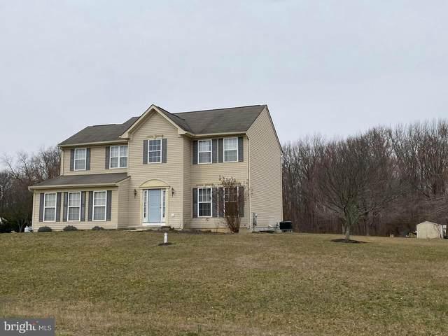14 Grant Lane, SMYRNA, DE 19977 (#DENC495466) :: Compass Resort Real Estate