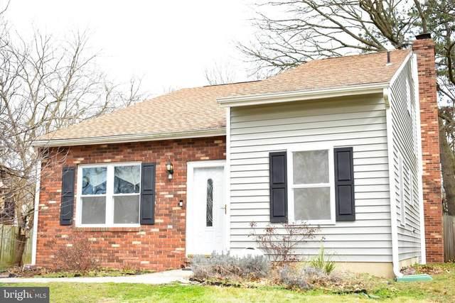 7812 Myers Drive, GLEN BURNIE, MD 21061 (#MDAA425900) :: Viva the Life Properties