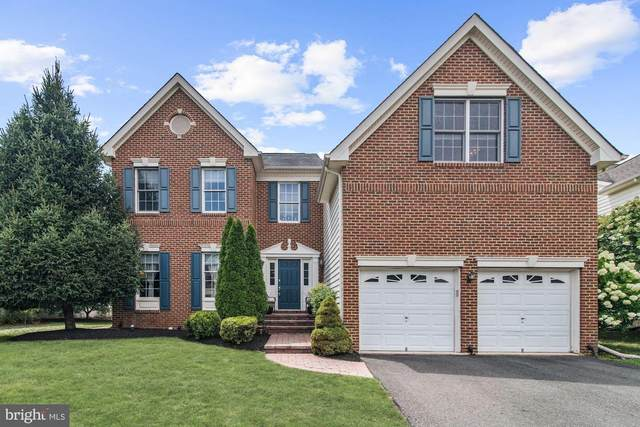 20123 Desert Forest Drive, ASHBURN, VA 20147 (#VALO403894) :: Homes to Heart Group