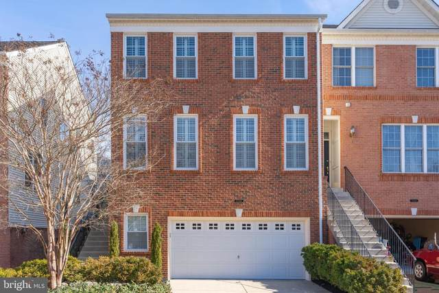 25342 Mcintyre Square, CHANTILLY, VA 20152 (#VALO403900) :: The Greg Wells Team