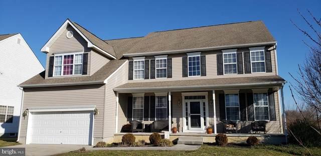 897 W Birdie Lane, MAGNOLIA, DE 19962 (#DEKT236256) :: Colgan Real Estate