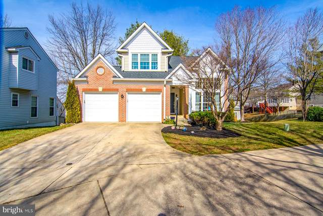 6477 Empty Song Road, COLUMBIA, MD 21044 (#MDHW275660) :: Mortensen Team