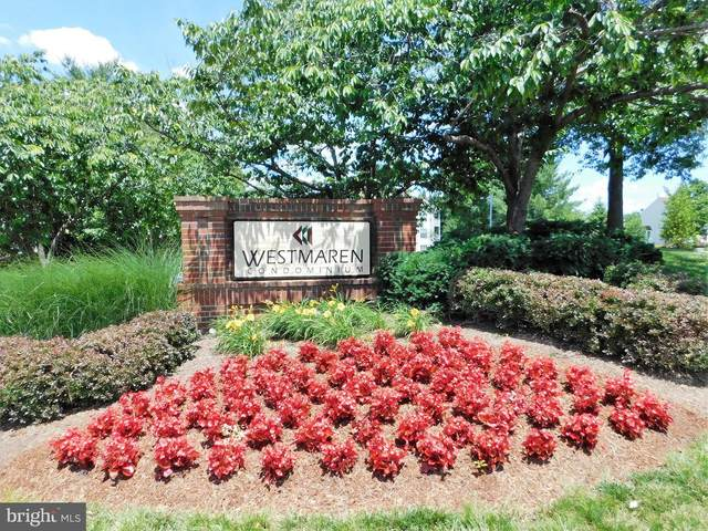 20958 Timber Ridge Terrace #203, ASHBURN, VA 20147 (#VALO403932) :: LoCoMusings