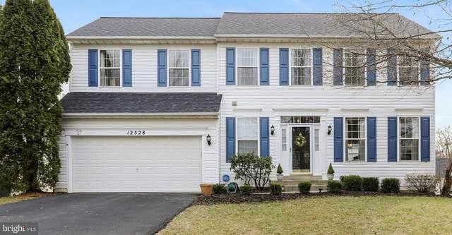 12528 Hawks Nest Lane, GERMANTOWN, MD 20876 (#MDMC696518) :: Blackwell Real Estate