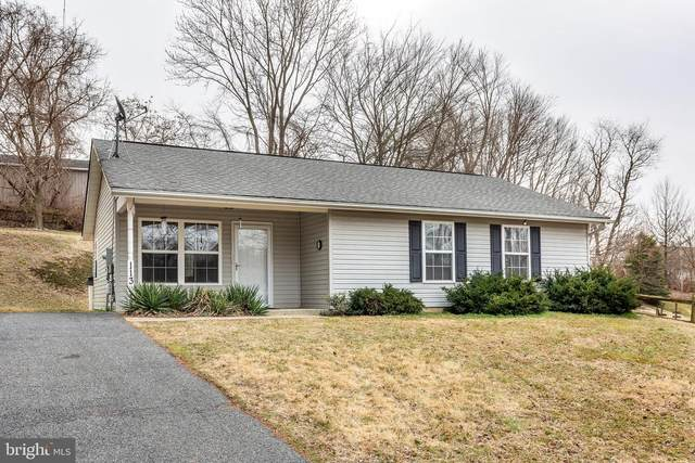 113 Lippy Avenue, WESTMINSTER, MD 21157 (#MDCR194706) :: LoCoMusings