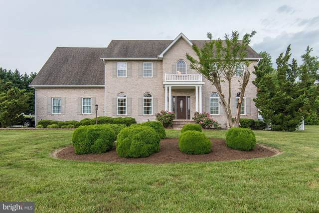 6205 Nicole Drive, SAINT LEONARD, MD 20685 (#MDCA174738) :: Radiant Home Group
