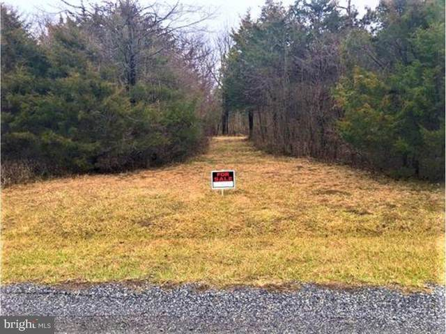 Kestrel Drive, FALLING WATERS, WV 25419 (#WVBE175056) :: Pearson Smith Realty