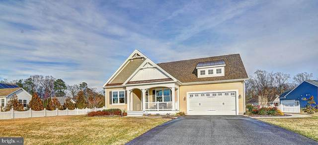 33988 Sand Bay Drive, LEWES, DE 19958 (#DESU156500) :: The Allison Stine Team