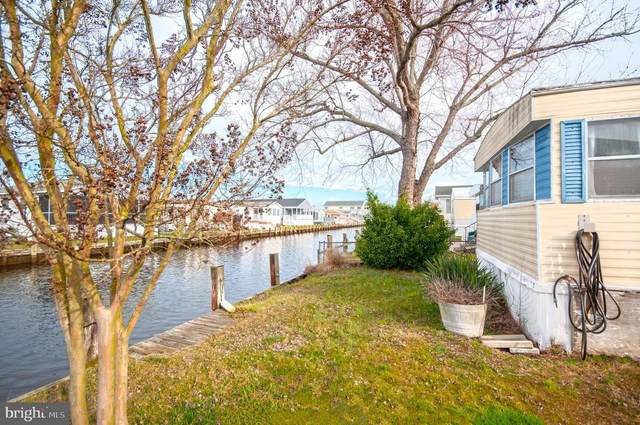 37059 Canvasback Road, SELBYVILLE, DE 19975 (#DESU156510) :: Atlantic Shores Sotheby's International Realty