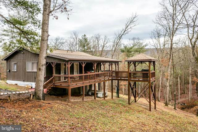 16658 Deer Run Road, BROADWAY, VA 22815 (#VARO101076) :: AJ Team Realty