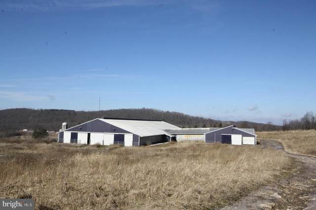 149 Devils Half Acre Road, GRANTSVILLE, MD 21536 (#MDGA132142) :: Certificate Homes