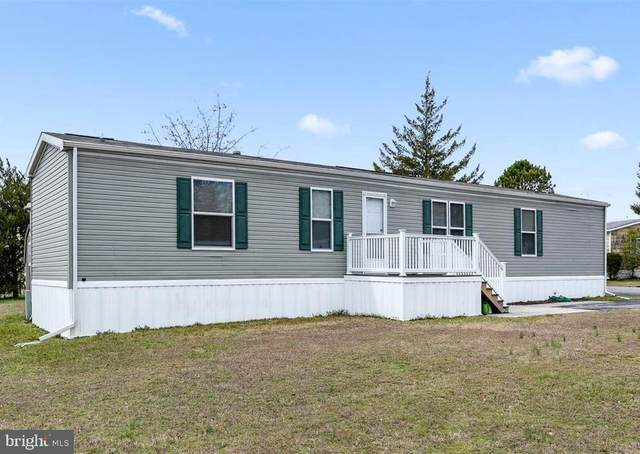 41 Kyle Circle, MILLSBORO, DE 19966 (#DESU156578) :: The Allison Stine Team