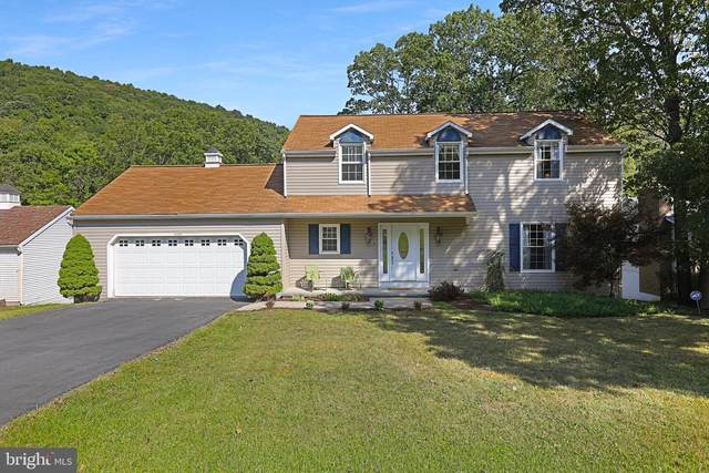 15109 Trail Ridge Road SW, CRESAPTOWN, MD 21502 (#MDAL133734) :: Charis Realty Group