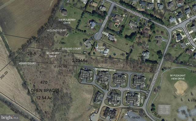 Mulberry Drive, MECHANICSBURG, PA 17050 (#PACB121692) :: Keller Williams of Central PA East