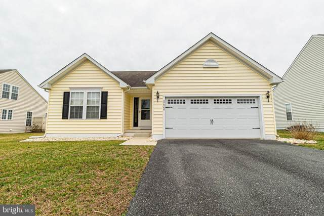 37548 Janice Circle, SELBYVILLE, DE 19975 (#DESU156618) :: Compass Resort Real Estate