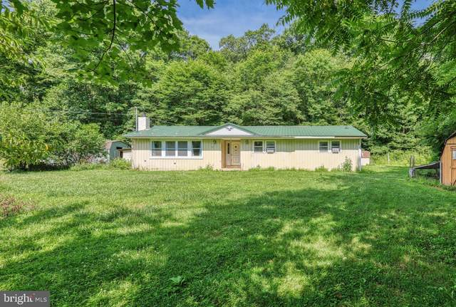 121 Pisgah Rest, SHERMANS DALE, PA 17090 (#PAPY101862) :: TeamPete Realty Services, Inc