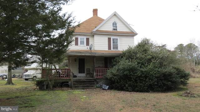 9782 Deal Island Road, DEAL ISLAND, MD 21821 (#MDSO103230) :: Brandon Brittingham's Team