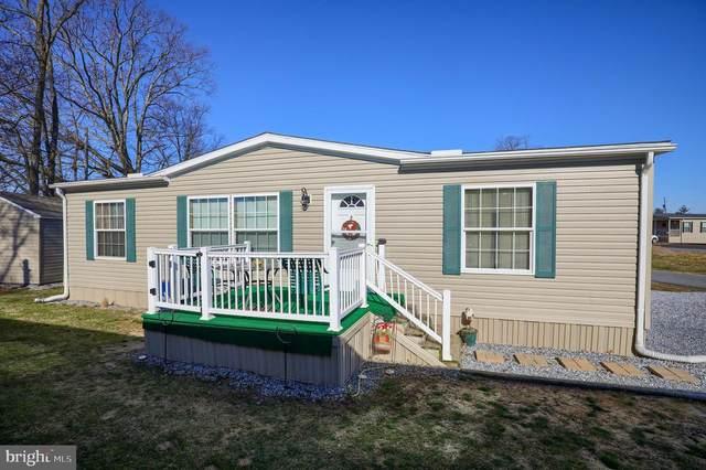 214 Amber Cir Amber Circle, NEW HOLLAND, PA 17557 (#PALA159216) :: Bob Lucido Team of Keller Williams Integrity