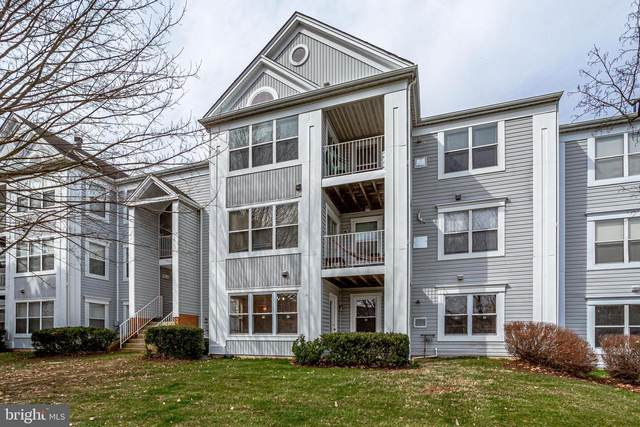 14101 Valleyfield Drive 3-4, SILVER SPRING, MD 20906 (#MDMC696950) :: Keller Williams Flagship of Maryland